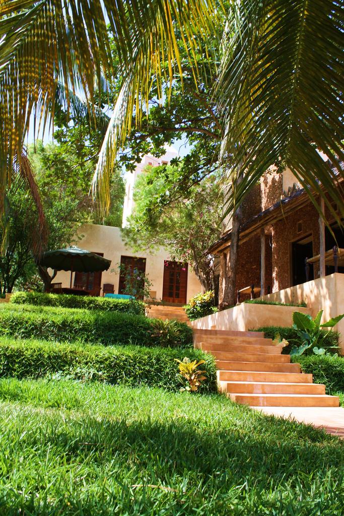 12 stairs in garden